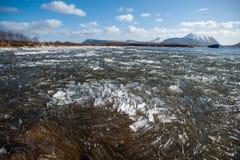 Primavera en Noruega fotografía de archivo libre de regalías