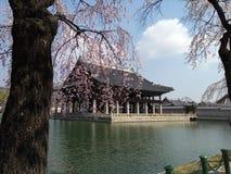 Primavera en palacio fotos de archivo