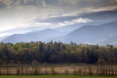 Primavera en parque nacional de la montaña ahumada en Tennesse Foto de archivo