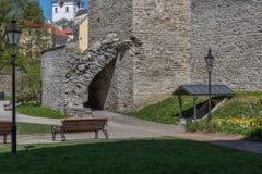 Primavera en Tallinn vieja Fotografía de archivo