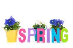 Primavera en texto Imágenes de archivo libres de regalías