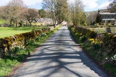 Primavera en un camino reservado del pueblo fotografía de archivo