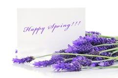 Primavera feliz fotos de archivo libres de regalías