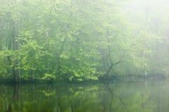 Primavera, fiume di Kalamazoo in nebbia Immagini Stock