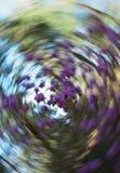 Primavera Forest Abstract Swirl, foco selectivo Imagen de archivo libre de regalías