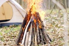 In primavera foresta una tenda con un fuoco a Fotografie Stock