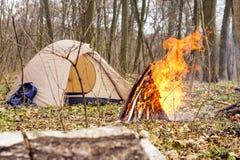In primavera foresta una tenda con un fuoco a Immagini Stock Libere da Diritti