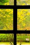 Primavera fuori della finestra fotografia stock