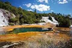 Primavera geotérmica en el valle ocultado Korako de Orakei. Isla del norte Nueva Zelanda imagen de archivo