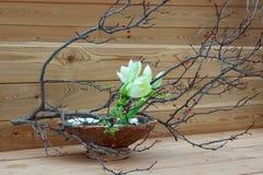 Primavera Ikebana, disposizione floreale giapponese fotografia stock