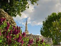 Primavera, la lila florece en el parque zoológico de Moscú Foto de archivo libre de regalías
