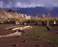 Primavera in Leh, Ladakh Fotografia Stock