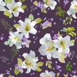 Primavera Lily Flowers Background Imágenes de archivo libres de regalías