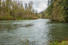 Primavera a lo largo del Green River Imagenes de archivo