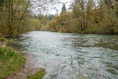 Primavera a lo largo del Green River 3 Fotografía de archivo libre de regalías