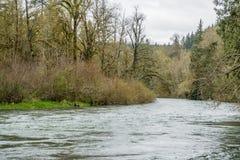 Primavera a lo largo del Green River 5 Foto de archivo