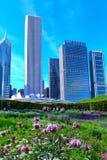 Primavera a Lurie Garden nel parco di millennio, Chicago fotografia stock