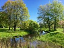 Primavera nel Central Park di Riga Fotografia Stock