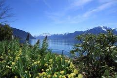 Primavera nel lago geneva, Montreux, Svizzera fotografia stock