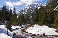 Primavera nel Tatras Immagine Stock Libera da Diritti