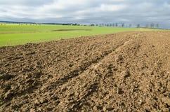 Primavera nel terreno coltivabile con i campi Fotografia Stock
