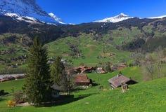 Primavera nel villaggio di Grindelwald in Berner Oberland Immagini Stock