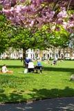 Primavera nella città immagine stock