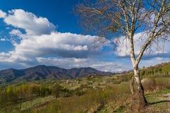 Primavera nella Transilvania Bello paesaggio con le montagne carpatiche nei precedenti Fotografie Stock Libere da Diritti