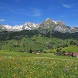 Primavera nella valle di Toggenburg Immagine Stock