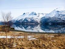 Primavera nelle alpi di Lyngen, Norvegia Immagini Stock Libere da Diritti