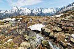 Primavera nelle alpi italiane Fotografia Stock Libera da Diritti