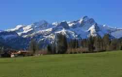 Primavera nelle alpi svizzere Immagine Stock