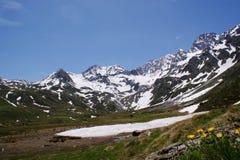 Primavera nelle alte montagne Fotografia Stock Libera da Diritti