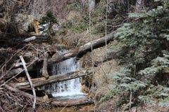Primavera nelle montagne Immagini Stock
