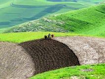 Primavera nelle montagne Immagini Stock Libere da Diritti