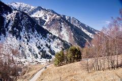 Primavera nelle montagne Fotografia Stock