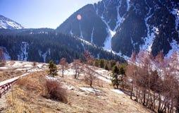 Primavera nelle montagne Fotografie Stock