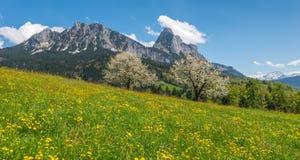 Primavera nelle montagne Alpi svizzere Fotografia Stock Libera da Diritti