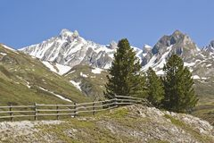 Primavera nelle montagne del Tirolo del sud Immagini Stock Libere da Diritti