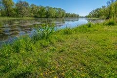Primavera nello Iowa Immagine Stock
