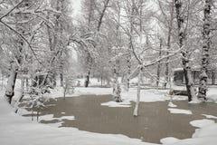 Primavera Nevado en el parque Foto de archivo