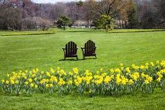 primavera nos jardins Fotografia de Stock Royalty Free