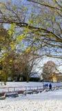 ¿Primavera o invierno? Cambio de clima en Dinamarca Foto de archivo