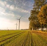 Primavera o paisaje otoñal con los molinoes de viento en campos Fotografía de archivo