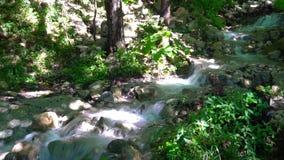 Primavera pura de la montaña que fluye profundamente en las montañas almacen de metraje de vídeo