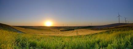 Primavera que iguala la luz y la puesta del sol en el paisaje cerca de Arroyo del Olivillo entre Sanlucar y Jerez de la Frontera, imágenes de archivo libres de regalías
