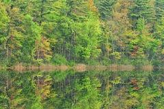 Primavera, reflexiones largas del lago Fotografía de archivo