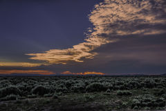 Primavera Sage Sunset fotografie stock