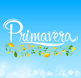 Primavera, Spring spanish text, vector lettering design Royalty Free Stock Image