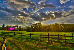 Primavera temprana HDR de la granja del trigo Foto de archivo